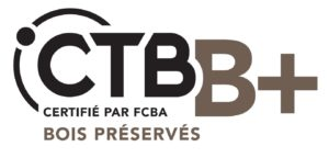 logo CTB B+